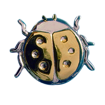 Sincere Thoughts Ladybug Pin